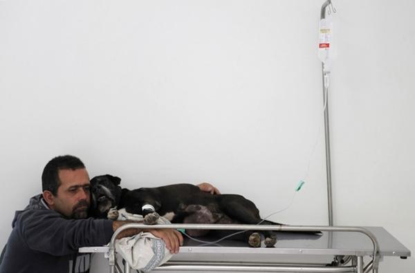 Il centro veterinario per i poveri a San Paolo