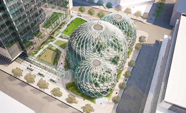 La biosfera di Amazon
