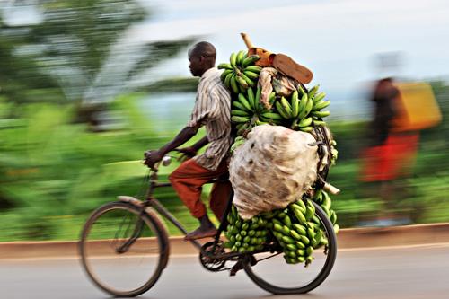 Un ciclista in Burundi affronta una discesa carico di banane