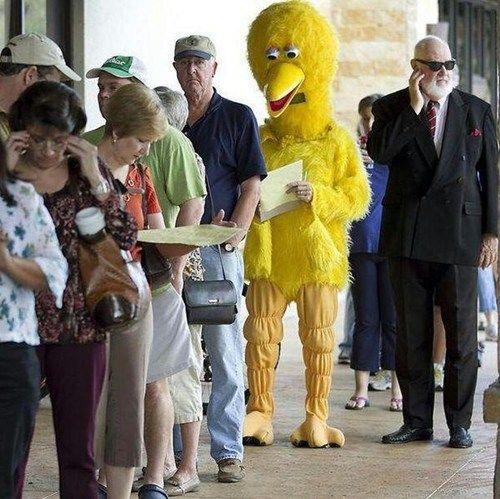 Big Bird vota alle presidenziali 2012