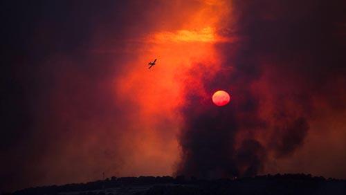 La foresta del Carmelo in fiamme