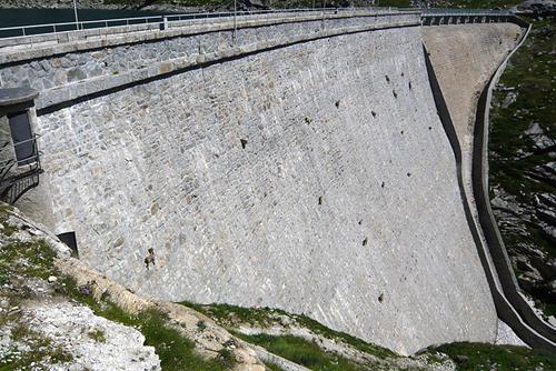 Capre impegnate a scalare la diga del Cingino