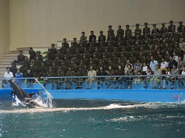 L'acquario di Pyongyang