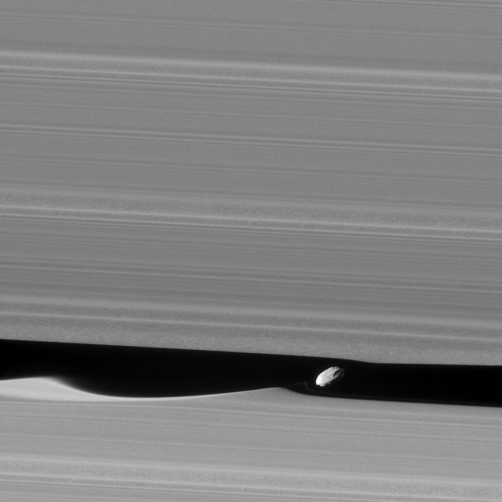 L'effetto gravitazionale della luna Dafni sugli anelli di Saturno