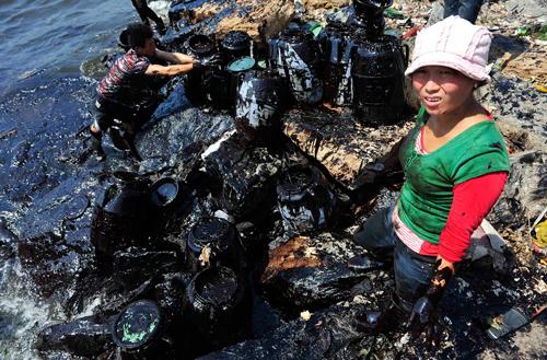Volontari ripuliscono la baia di Dalian dal greggio
