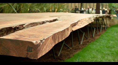 Parte di un tronco pietrificato a Euroflora