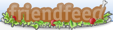 Il logo di FriendFeed per il 'Thanksgiving'