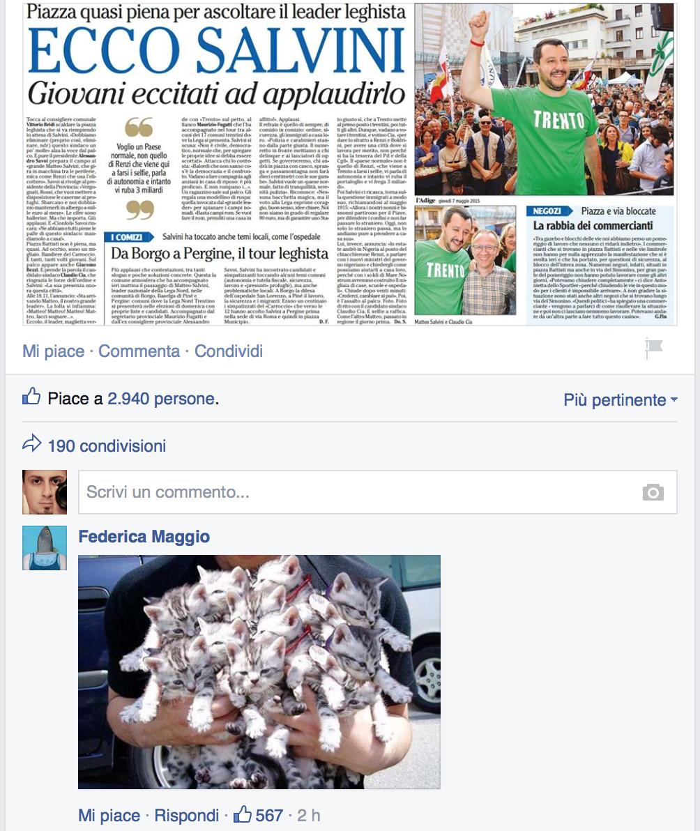 La pagina Facebook di Salvini invasa dai gattini