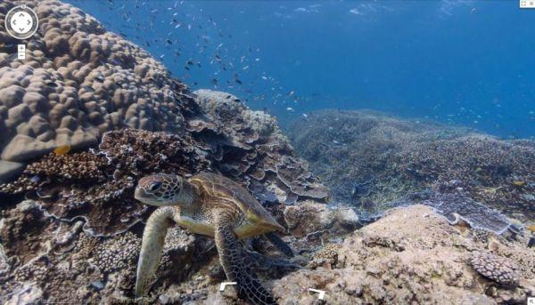 Google Street View sott'acqua