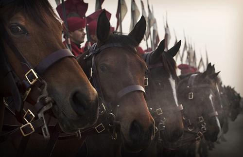 Parata militare a cavallo in India