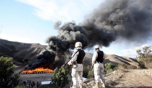 Il fumo prodotto dalle 134 tonnellate di marijuana brucite dall'esercito messicano