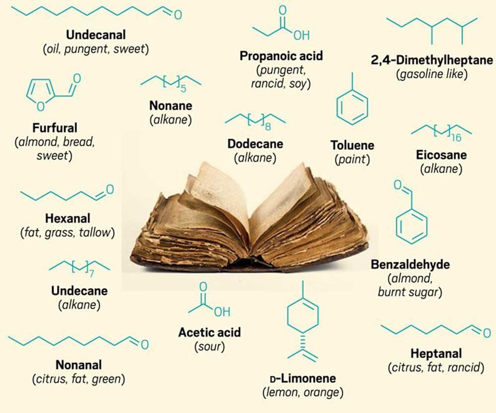 15 molecole che permettono di identificare l'odore di un vecchio libro