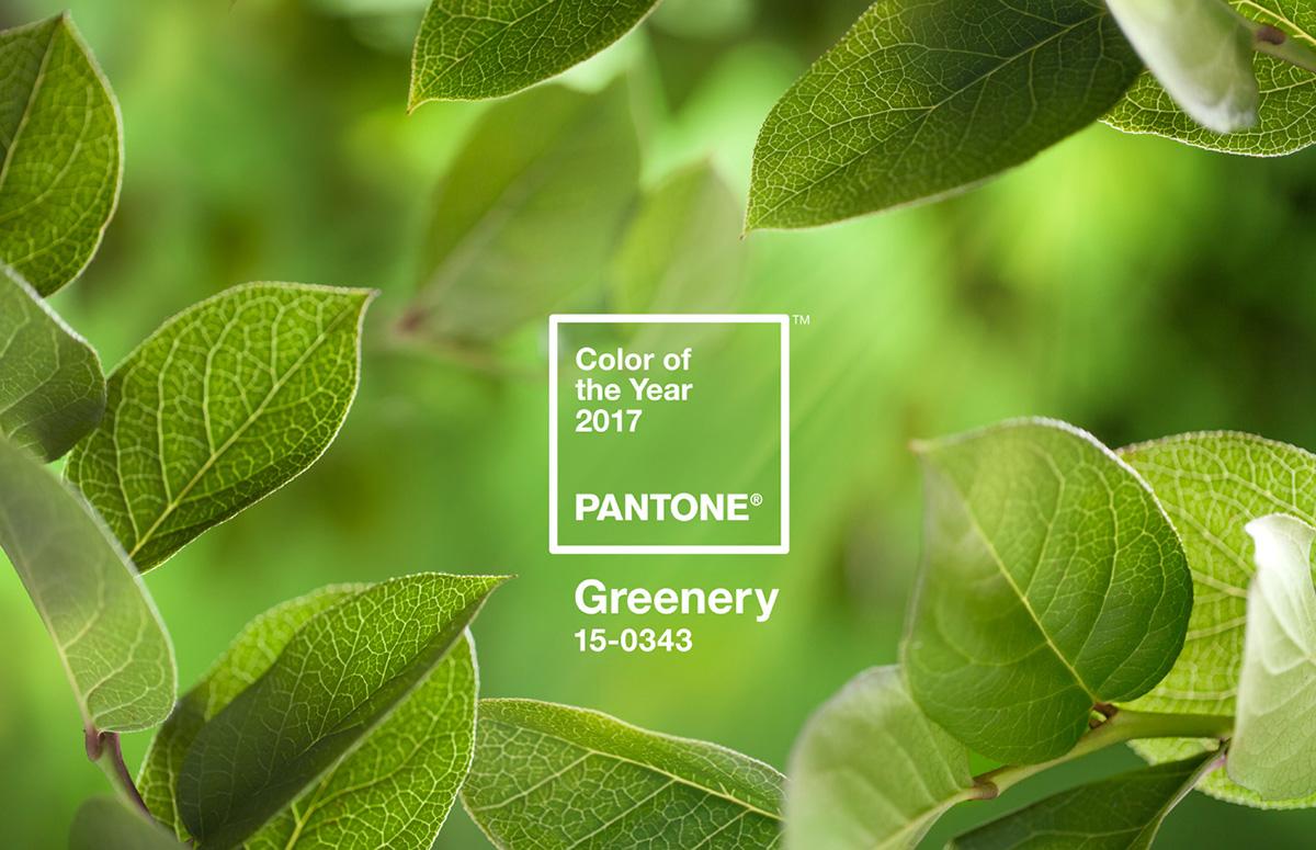 Il colore Pantone greenery