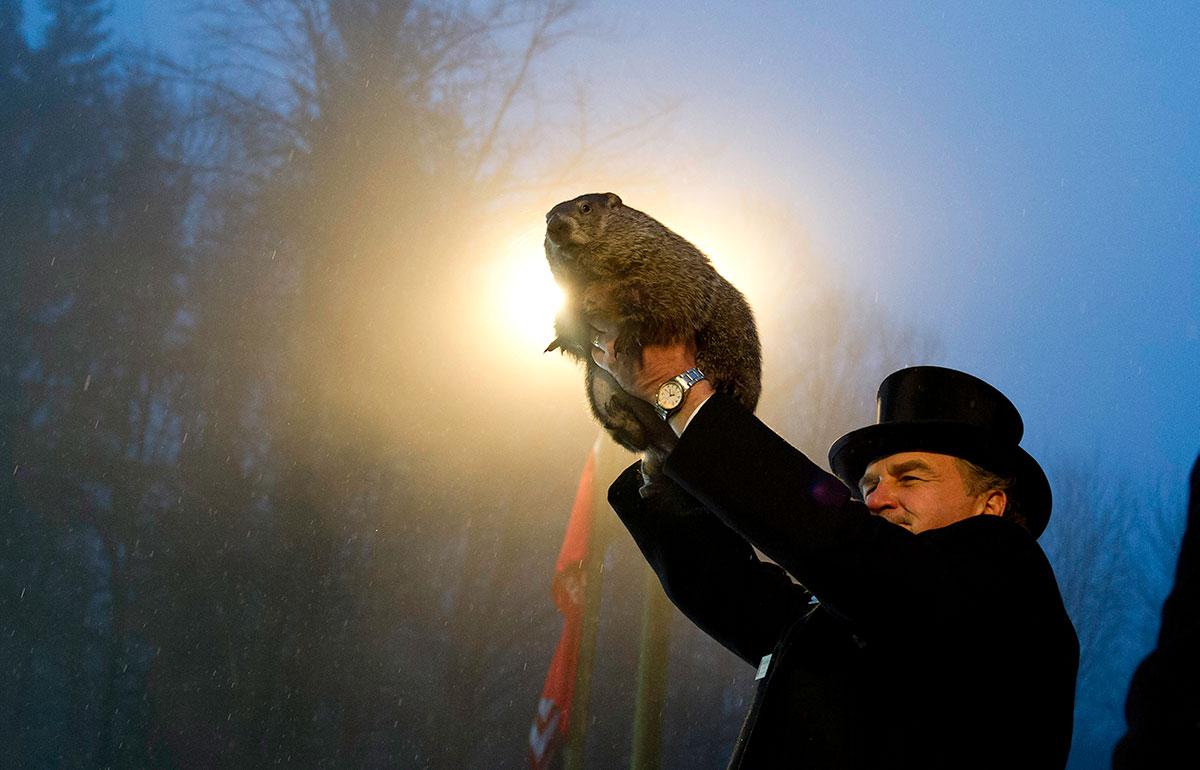 Punxsutawney Phil nel Giorno della Marmotta