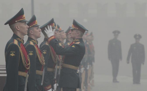 Mosca soffocata dal fumo degli incendi