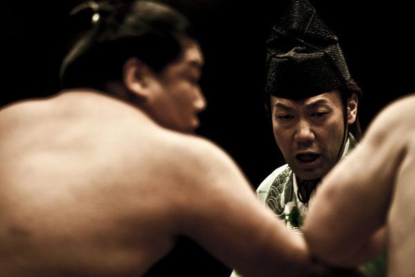 Arbitro e lottatori di sumo