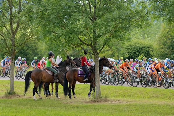 Cavalli al Tour 2012