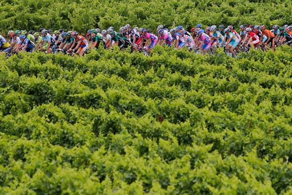 La carovana tra i vigneti al Tour 2012