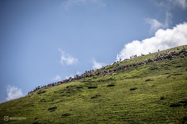 Pubblico sulle Alpi al Tour 2014