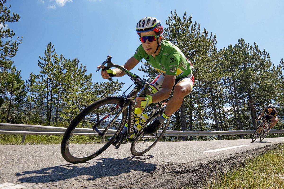 Sagan al Tour 2015