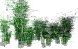 La foresta virtuale di TLUC