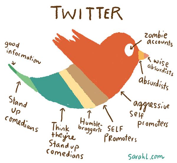 Gli utenti di Twitter in infografica