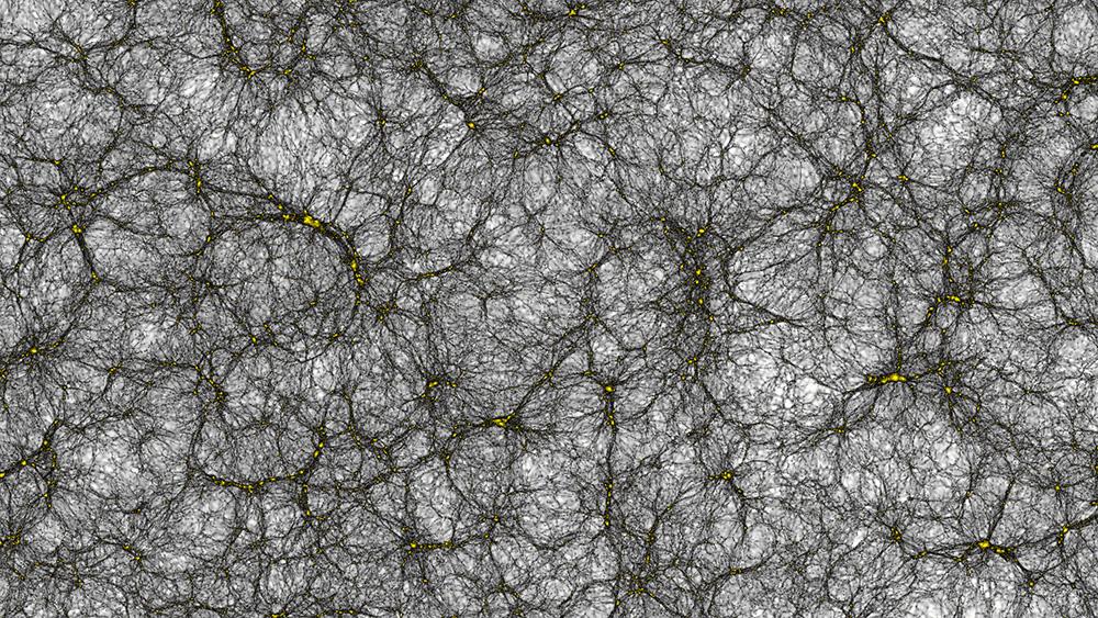 La simulazione del nostro universo