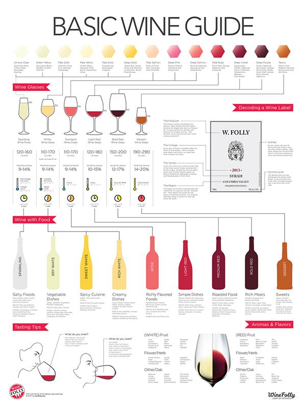 La guida al vino in infografica