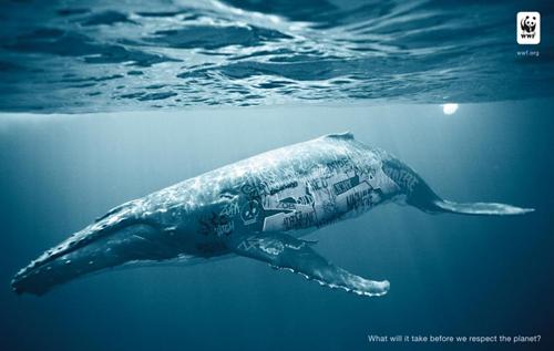 La balena ricoperta di graffiti nella pubblicità del WWF